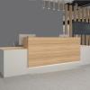 Reception Desk 0007
